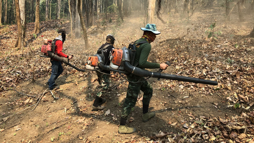 fighting forest fires in Thailand