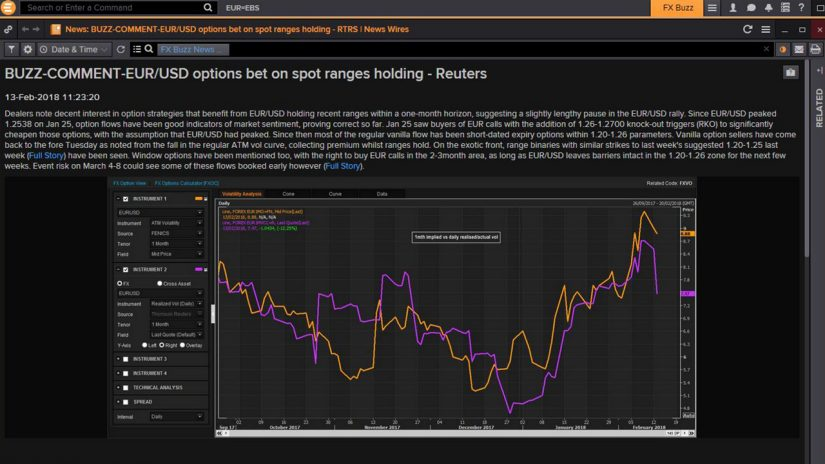 screenshot of FX Buzz Forex option commentary